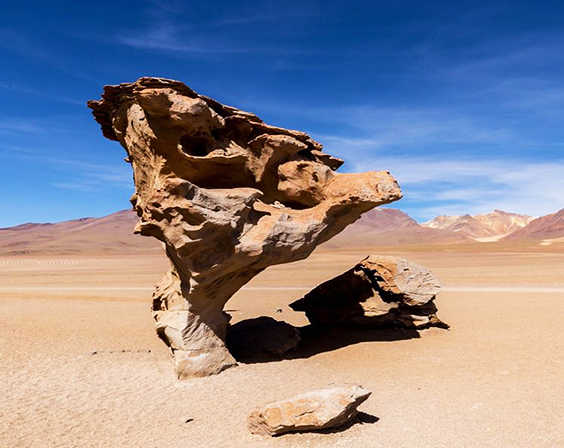 bolivia tour package arbol piedra